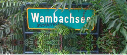 Wambachsee