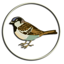 Sparrow Divers Logo